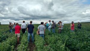 CEE On-Farm Field Day