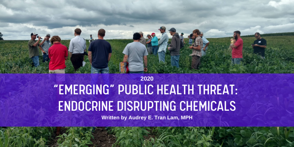 Emerging_ Public Health Threat - EDCs blog header